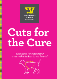 cuts for the cure