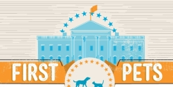 Cropped Infographic About First Pets Of The White House