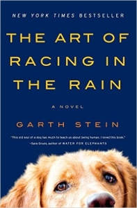 book cover for The Art of Racing in the Rain