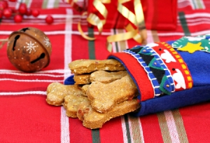 homemade holiday dog treats
