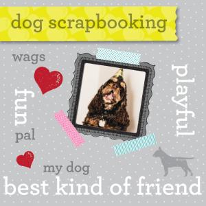 scrapping booking pet photos