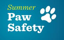 Paw Safety Thumbnail