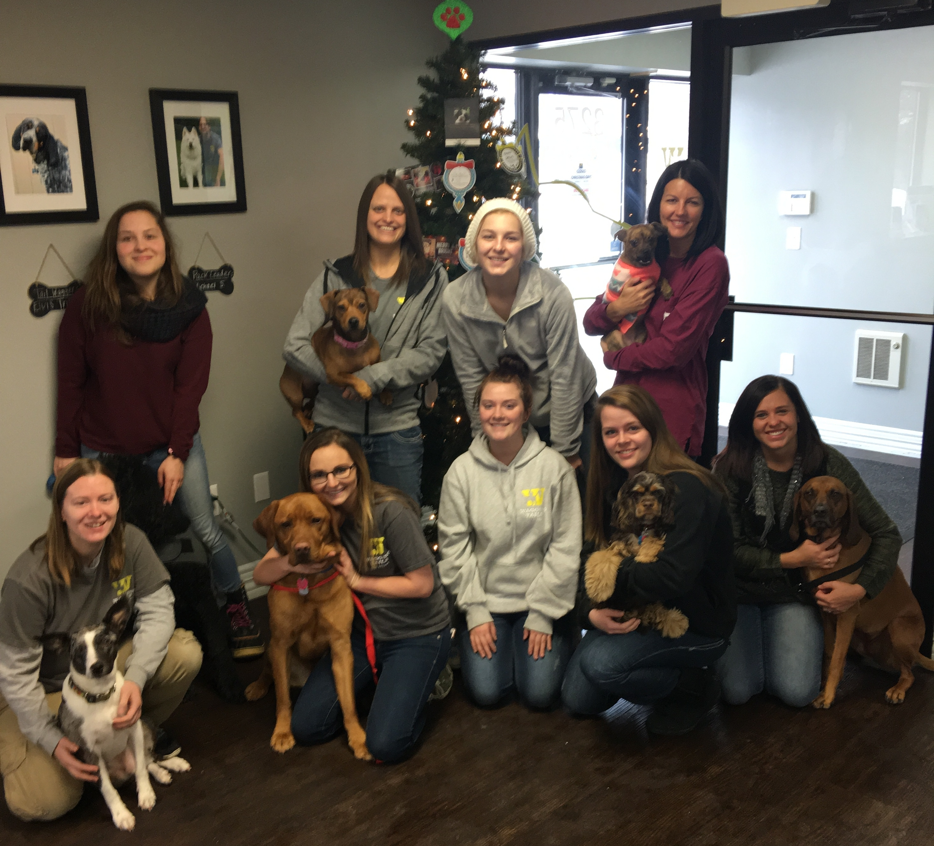 Wagging Tails Staff 2016