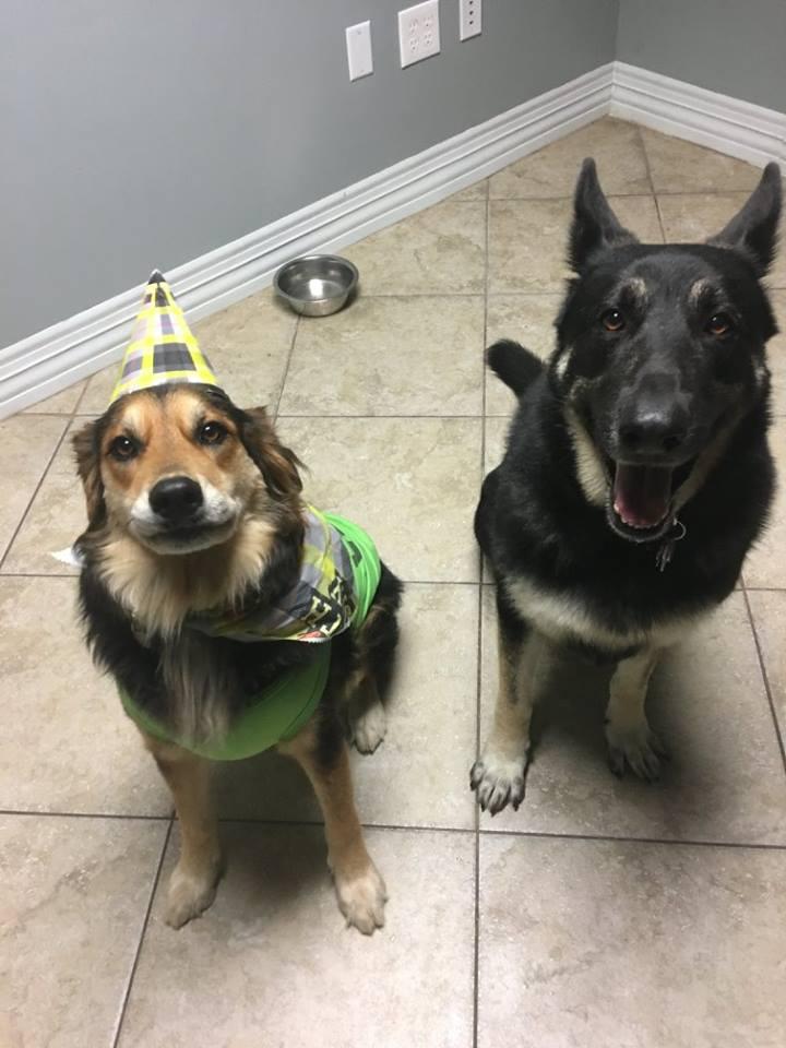 Tucker And Matrix