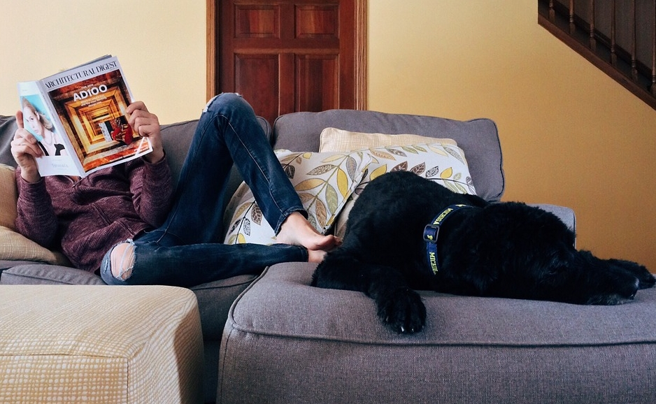 person and dog on couch