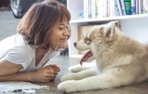 Girl With Dog Thumbnail